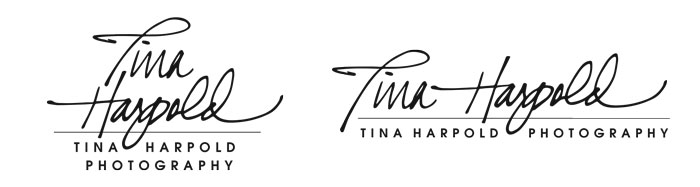 Tina Harpold Photography Logo Design